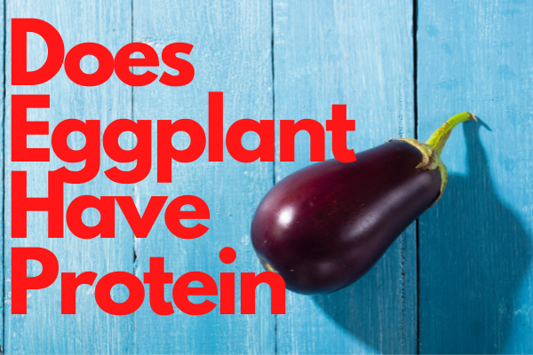 Does Eggplant Have Protein? 10 Benefits of including it in Your Diet