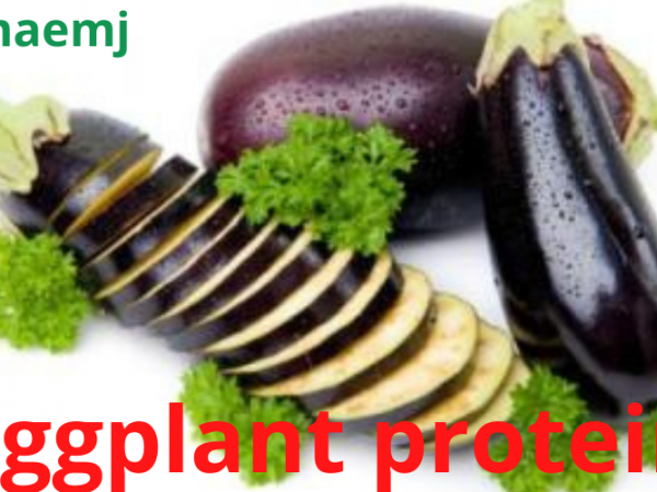 What Is Eggplant Protein? 5 Ways It Can Benefit Your Health:
