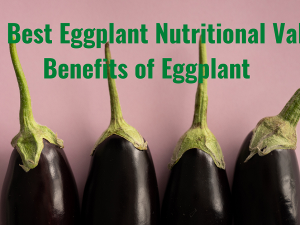 The Best Eggplant Nutritional Value – Benefits of Eggplant